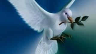 La paz con vosotros